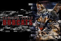 BG Bobcats Athletics